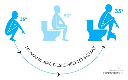Siddestillingen er vigtig på toilettet